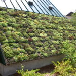 Green Roof Thermal Conductivity